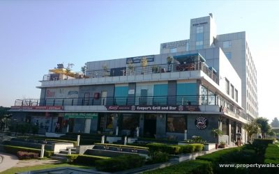 Xogene Opens New Location in Gurgaon!